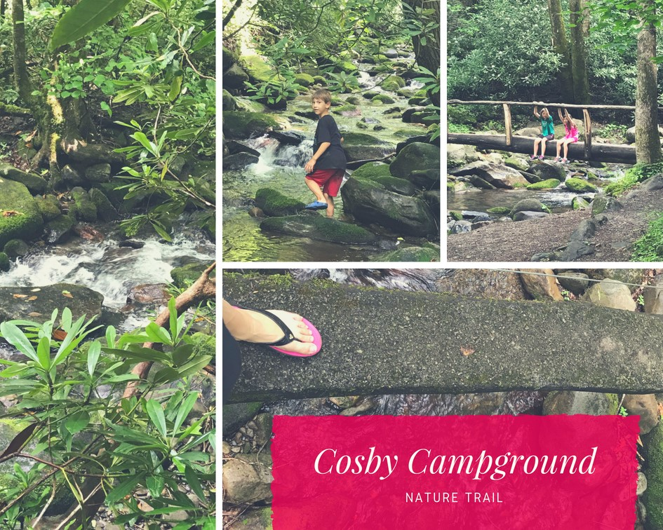 Cosby Campground nature trail