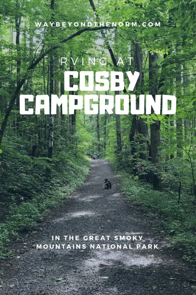 Great Smoky Mountains National Park is the most visited national park in America. Check out our review of RVing at Cosby Campground located within the Smokies. #Tennessee #Camping #Campground #RVing #WayBeyondTheNorm