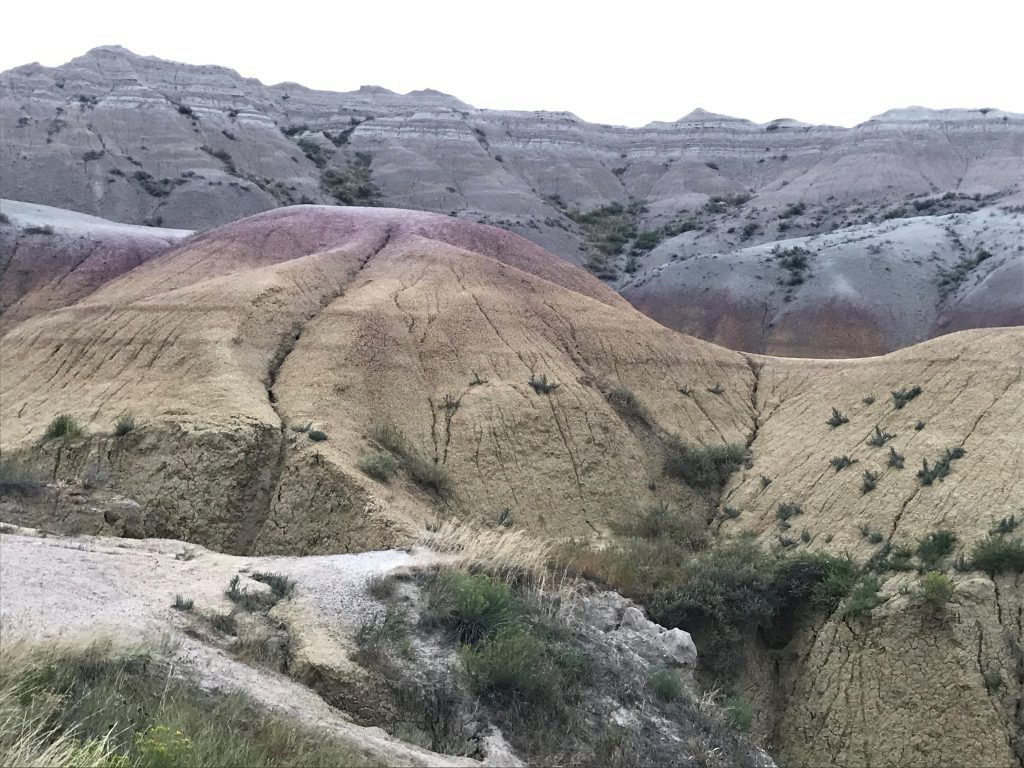 Yellow mounds at the Badlands