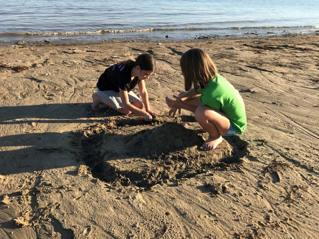 Standley Lake Regional Park sand castles