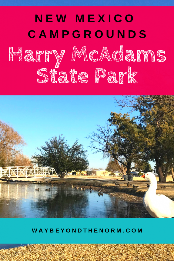Harry McAdams State Park pin image