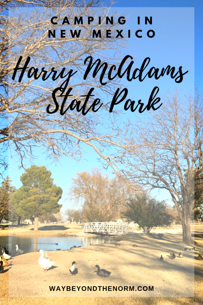 Harry McAdams State Park is a hidden gem in the small town of Hobbs, NM. If you'll be traveling through the area and need a place to camp for a night or a week, you'll be happy with your decision to stay at this small state park. #NewMexicoCamping #NewMexicoStateParks #NewMexicoCampgrounds #WayBeyondTheNorm