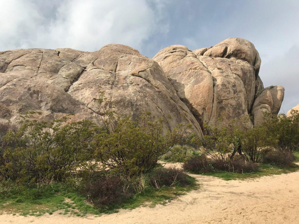 Huge boulders in Joshua Tree NP
