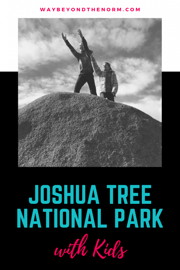 Joshua Tree NP pin image