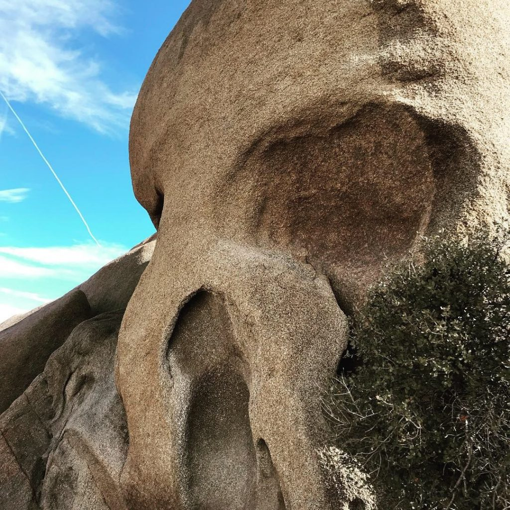 Joshua Tree National Park with the Kids at Skull Rock