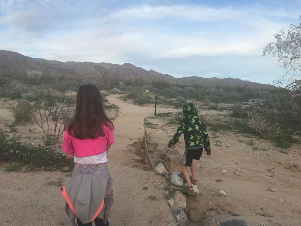 Joshua Tree National Park with the Kids exploring Bajada Nature Trail