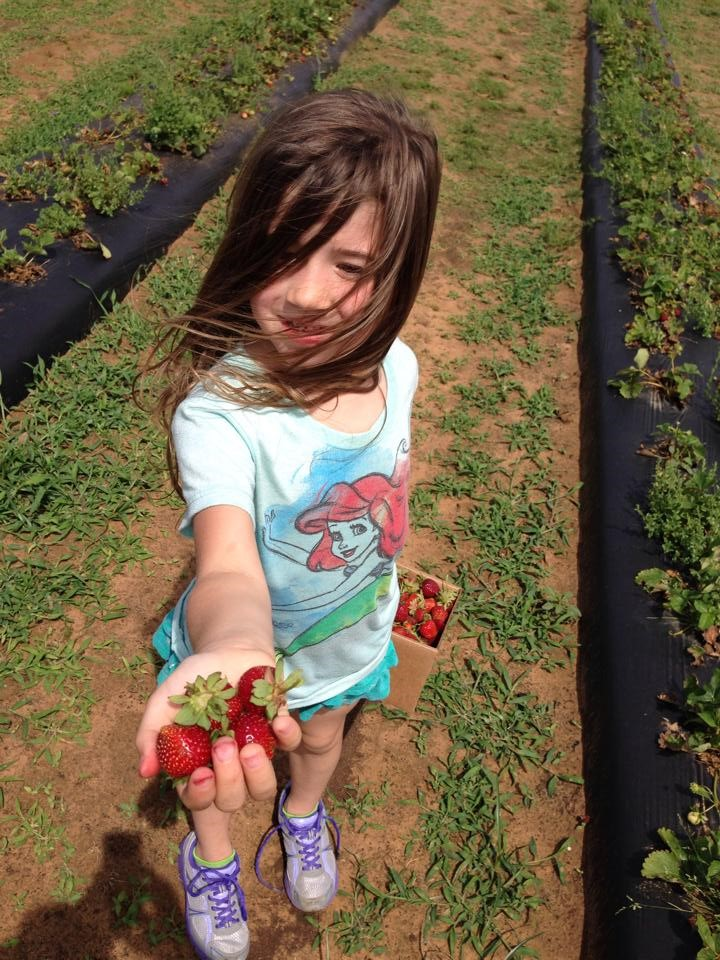 Dallas homeschooling Allison Strawberry Picking