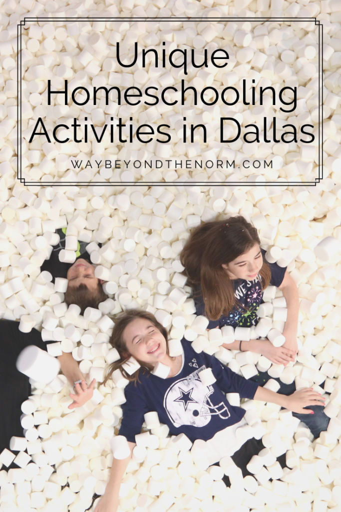 Unique Homeschool Attractions in Dallas pin image