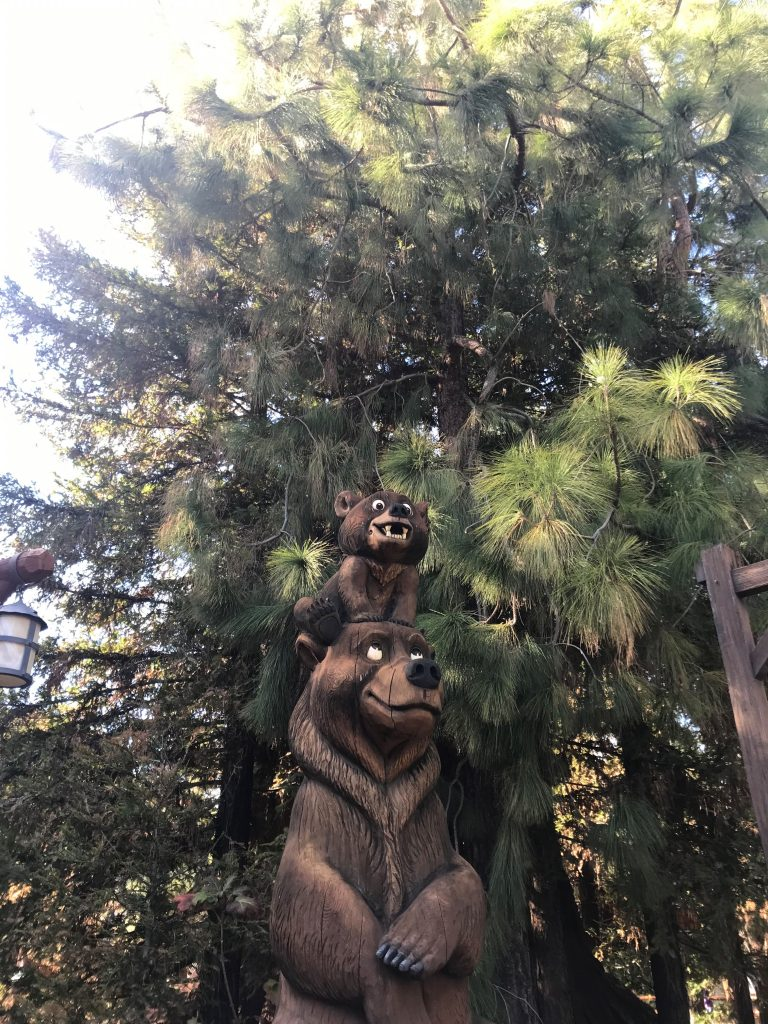 Bears at Redwood Creek Challenge Trail