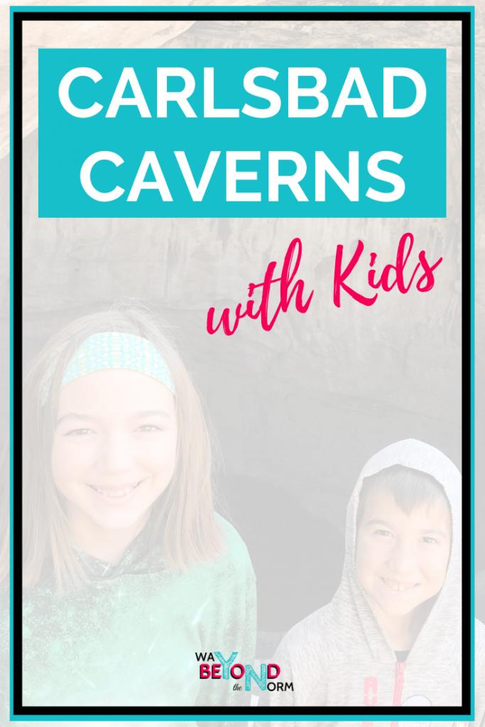 Carlsbad Caverns pin image