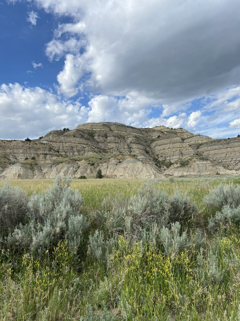 North Unit of Theodore Roosevelt National Park