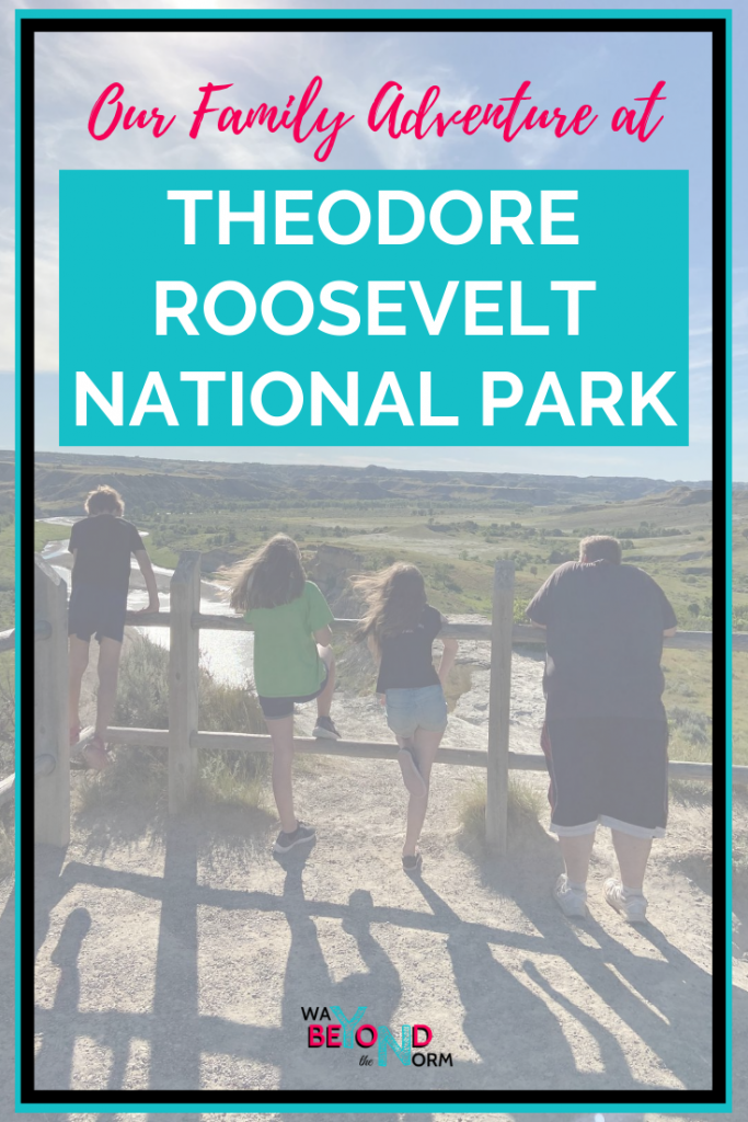Theodore Roosevelt National Park pin image